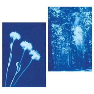 Sunprint: kit 12 fogli Fotosensibili