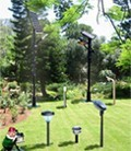 Garden lamps and path light